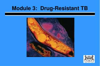 Module 3:  Drug-Resistant TB