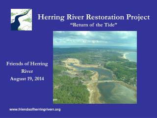 "Herring River Restoration Project "" Return of the Tide """