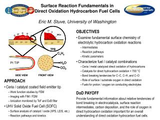 Surface Reaction Fundamentals in Direct Oxidation Hydrocarbon Fuel Cells