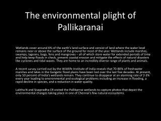 The environmental plight of Pallikaranai