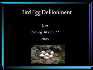 Bird Egg DeÌíloùment