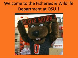 Welcome to the Fisheries & Wildlife Department at OSU!!