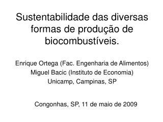 Sustentabilidade das diversas formas de produ��o de biocombust�veis.