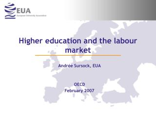 Higher education and the labour market