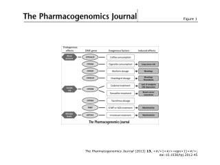 The Pharmacogenomics Journal  (2013)  13 , <#/>1<#/><epn>11<#/>; doi:10.1038/tpj.2012.45