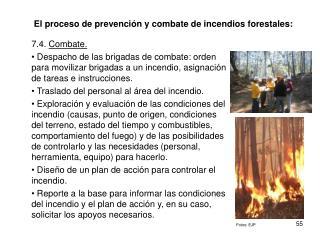 El proceso de prevenci�n y combate de incendios forestales: