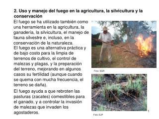 2. Uso y manejo del fuego en la agricultura, la silvicultura y la conservación