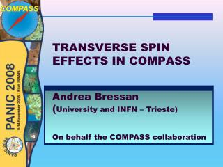 TRANSVERSE SPIN EFFECTS IN COMPASS