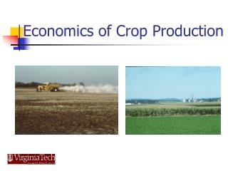 Economics of Crop Production