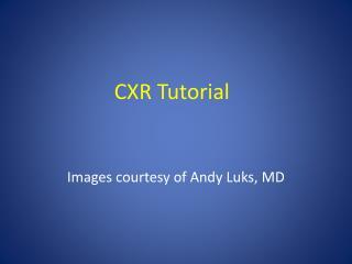 CXR Tutorial