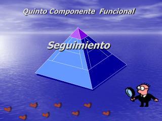 Quinto Componente  Funcional Seguimiento
