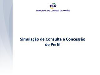 Simulação de Consulta e Concessão de Perfil