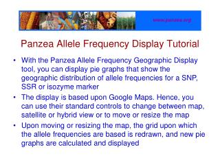 Panzea Allele Frequency Display Tutorial