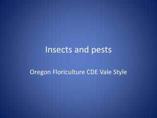 Insects and pests