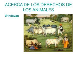 ACERCA DE LOS DERECHOS DE LOS ANIMALES