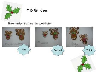 Y10 Reindeer