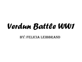 Verdun Battle WW1