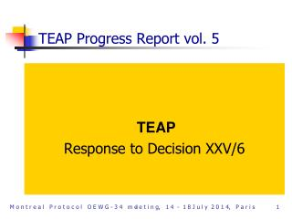 TEAP Progress Report vol. 5