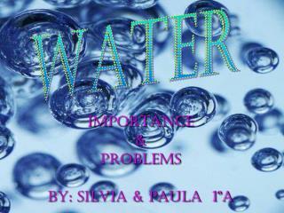 IMPORTANCE & PROBLEMS BY: SILVIA & PAULA  1ºA