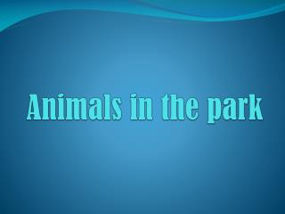 Animals  in  the  park