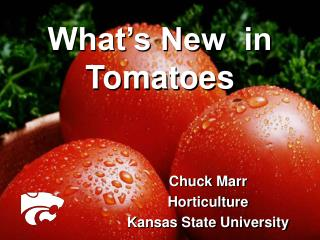 What's New  in Tomatoes