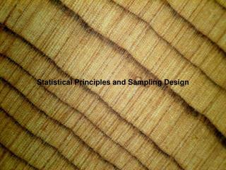 Statistical Principles and Sampling Design