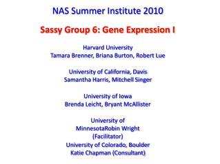 NAS Summer Institute 2010