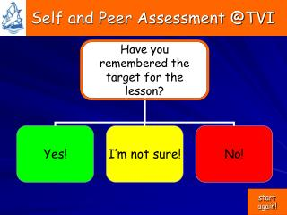 Self and Peer Assessment @TVI