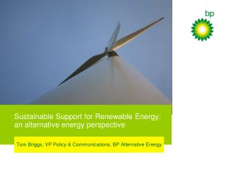 Sustainable Support for Renewable Energy: an alternative energy perspective
