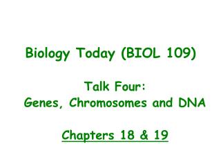 Talk Four: Genes, Chromosomes and DNA  Chapters 18 & 19