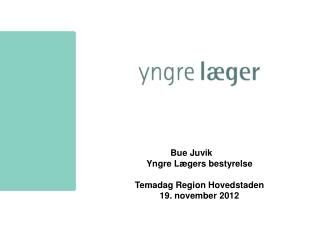 Bue Juvik Yngre L�gers bestyrelse Temadag Region Hovedstaden 19. november 2012