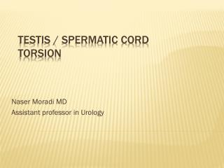 Testis / Spermatic cord TORSION