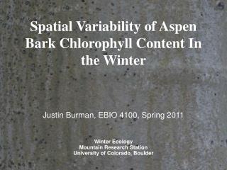 Spatial Variability of Aspen Bark Chlorophyll Content In the Winter