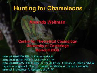 Hunting for Chameleons