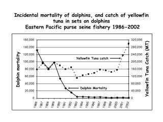 Dolphin Mortality