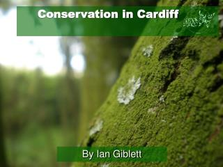 Conservation in Cardiff