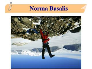 Norma Basalis
