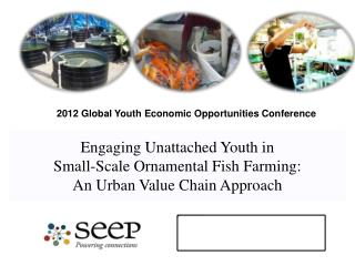 Engaging Unattached Youth in Small-Scale  Ornamental Fish  Farming: