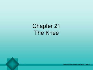 Chapter 21 The Knee