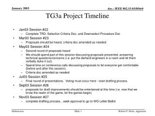 TG3a Project Timeline