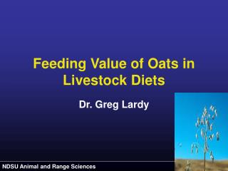 Feeding Value of Oats in Livestock Diets