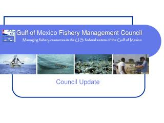 Managing fishery resources in the U.S. federal waters of the Gulf of Mexico