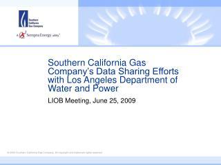 LIOB Meeting, June 25, 2009