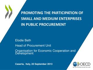 Promoting the participation of small and medium enterprises in public procurement