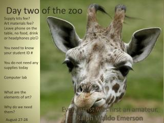 Day two of the zoo