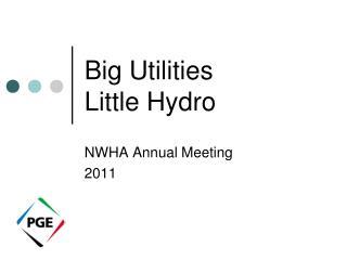 Big Utilities Little Hydro