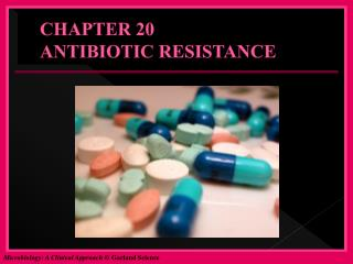 CHAPTER 20 ANTIBIOTIC RESISTANCE
