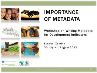 Importance  of metadata