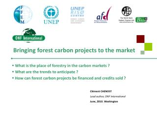 Bringing forest carbon projects to the market