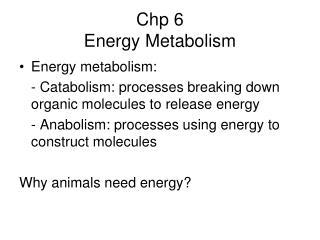 Chp 6 Energy Metabolism